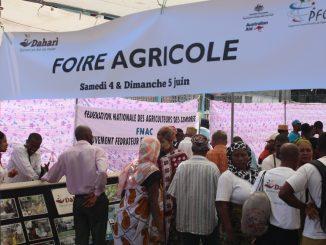 Foire agricole juin 2016 organisée par Dahari (photo d'archive Comores-infos)