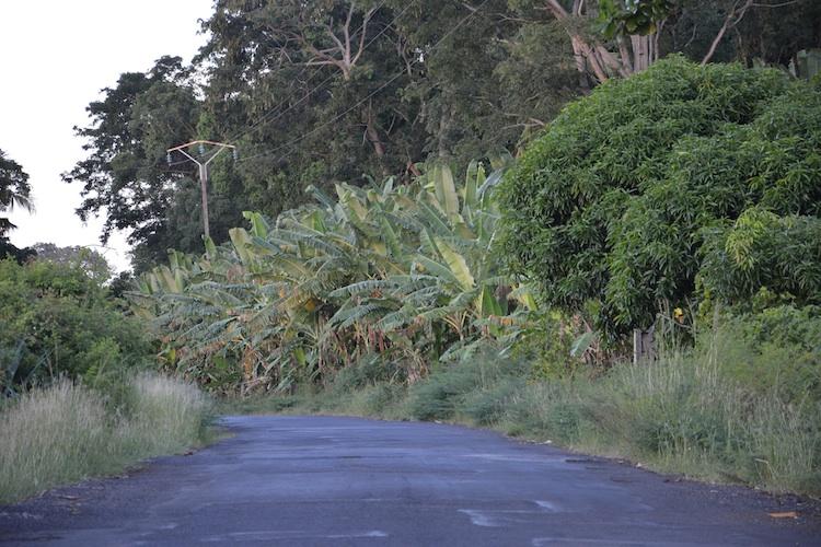 route-mitsamihuli.jpg