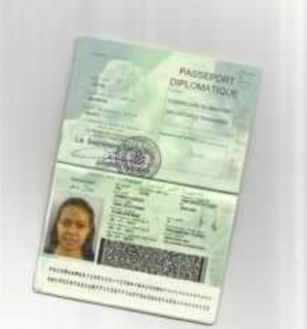 passeports-diplo1682983875.png
